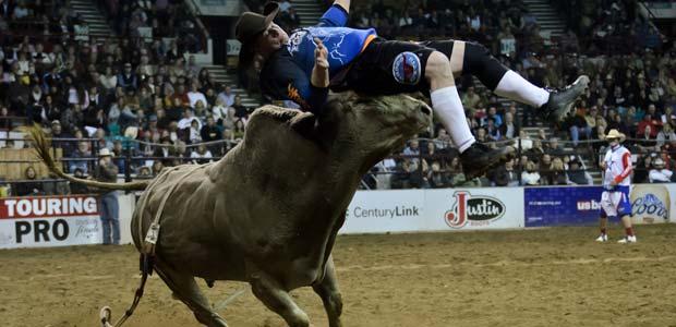 bull_riding_2