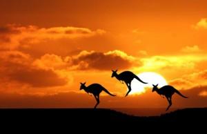 Jumping Kangaroo, Australia's must see destinations